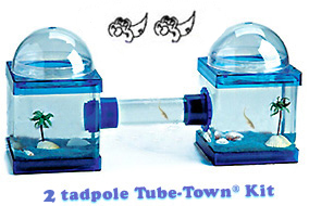 Tadpole Tube-Town... a great way to grow tads !