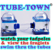 'Dew Blue' Single Tube-Town